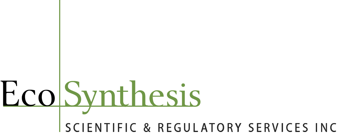 Ecosynthesis Scientific & Regulatory Services